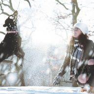 starostlivost o psa pocas zimy